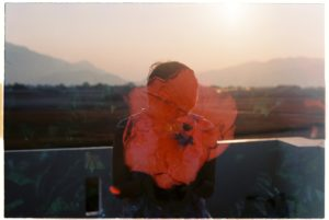 image of a person looking over a sunset with a flower from another shot of film over their face. they are turned away.
