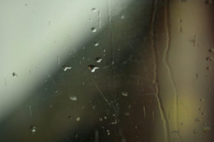 image of water droplets on a window on a greenish-looking rainy day.