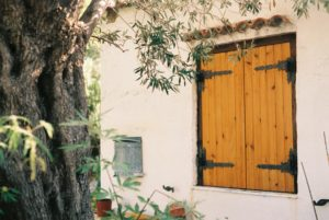 a plaster house with a yellow painted wooden door sits behind a tree with draping green foliage. the image is light and warm.