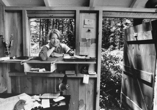 Annie Dillard - The Writing Life