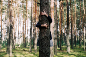 image of a well-lit forest of tall pine trees with no off-shoot branches in the background. In the center of the image is a dark pine with two hands clutching it - you see that man stands behind the pine and grips the tree like he's trying to hold on.