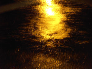 dark ground wet from rain with a gold reflection glimmering on the surface.