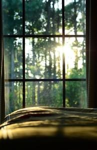 morning-window1