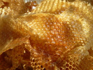 honey-comb-by-yves-tennevin-on-flickr