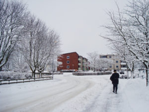 Person walking on the road in the snow during midday; the sky is gray and overcast, the street is rimmed with trees with every branch covered in snow.