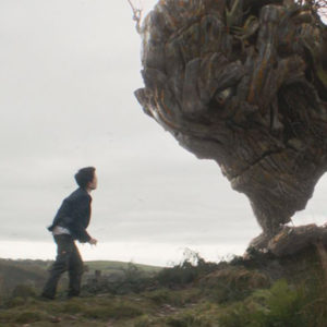 Still from the film A Monster Calls. Image shows a boy against a bare landscape looking up at an enormous face of a monster who looks like he's made of trees.