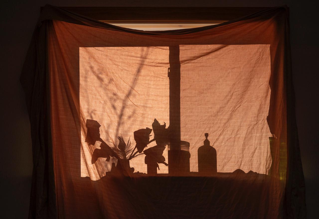 Week 2: <em>Living Room</em>, Meggan Gould, April 18, 2020