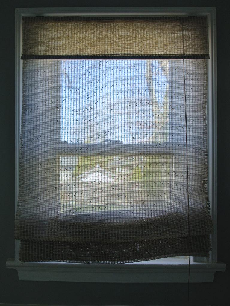 "Week 7: <em>Bathroom</em>, ""Every Window in My House Window 3,"" Hannah Smith Allen, May 22, 2020"