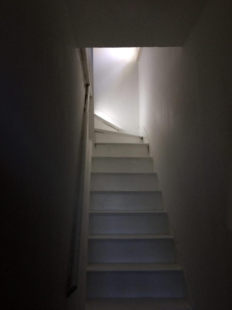 "Week 8: <em>Living Room</em>, ""The Light,"" Guler Ates, May 30, 2020"
