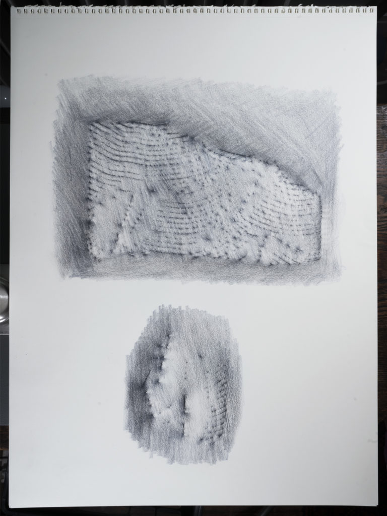 "Week 11: <em>Living Room</em>, ""Ceiling Fragment (Frottage),"" Yola Monakhov Stockton, June 19, 2020"