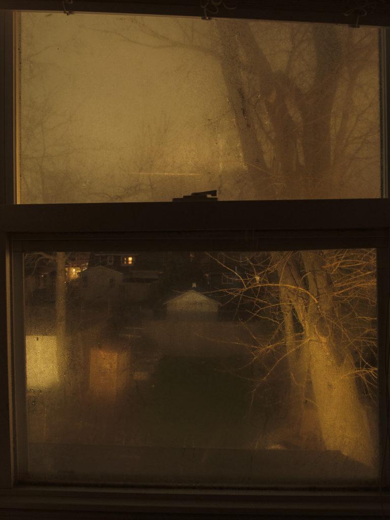 """Week 12: <em>Bathroom</em>, """"Every Window in My House, 17 Back Window,"""" Hannah Smith Allen, June 27, 2020"""