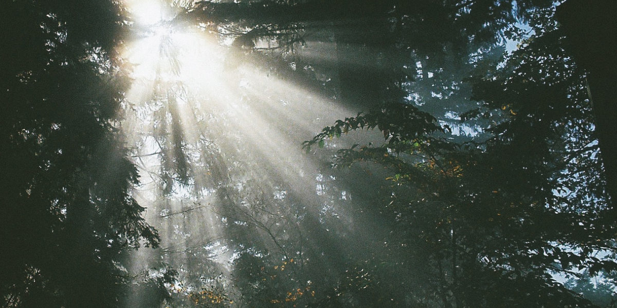 Autumn Sun Rays by Holly Lay on flickr