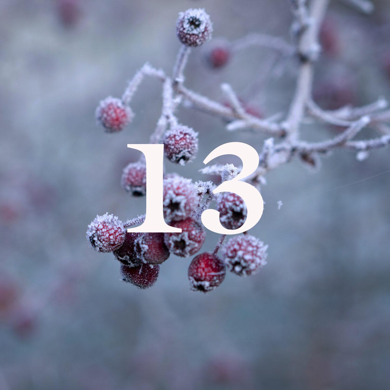 COLOR13