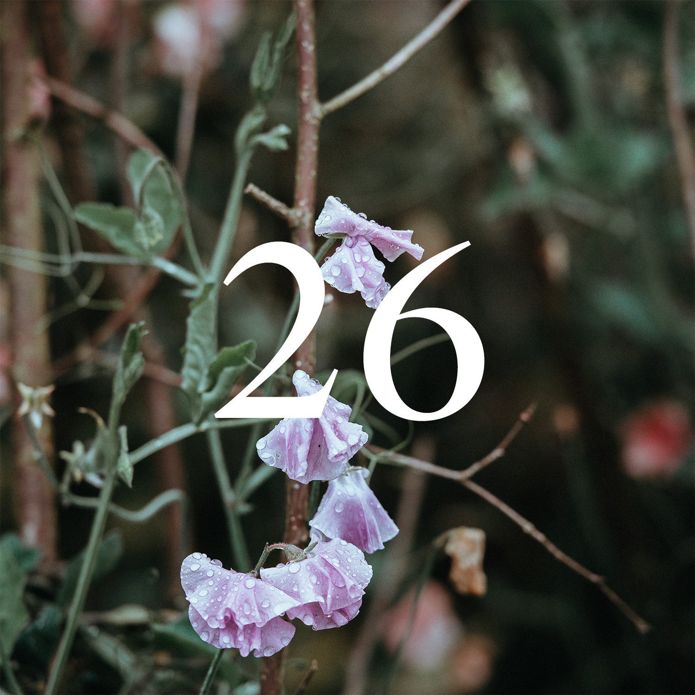 Calendar 4-26